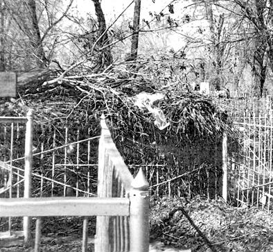 хлам на кладбище