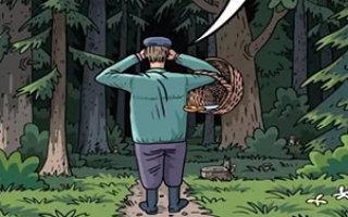 Чем дальше в лес, тем толще партизаны
