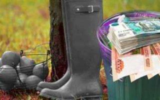 Совет Федерации готовит новые штрафы для дачников