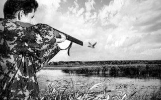 Выстрелы над озером