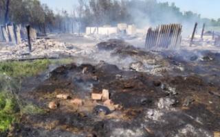 В Б. Таволожке из-за детской шалости сгорели надворные постройки