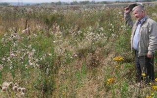Изъятие невостребованных земель упростят