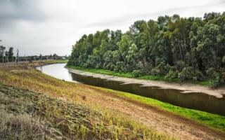 О проблемах водоснабжения в селах Пугачевского района