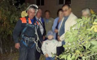 В Пугачеве спасатели сняли с дерева ребенка
