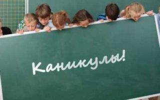 Член Комитета ГД: Выходная майская 12-дневка означает фактически окончание учебного года