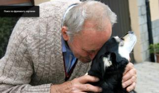 Золотое сердце ветеринара
