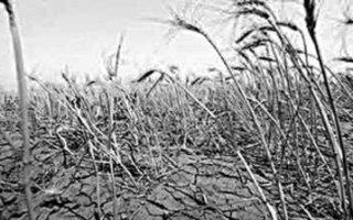 Прогноз на засуху