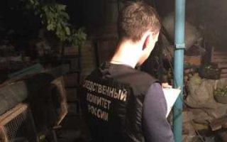 В Пугачеве обнаружили тело пенсионерки с раной на голове