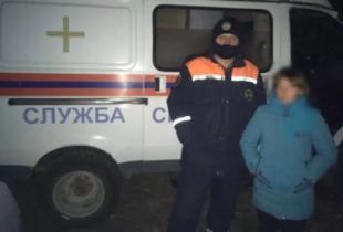 В Пугачеве спасатели искали пропавшего ребенка