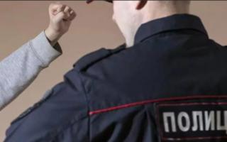 В Пугачеве пьяный водитель ударил полицейского по голове