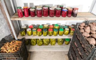 Жителям многоэтажек запретили хранить вещи на чердаках и подвалах