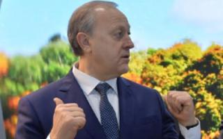 Радаеву предложили пересадить членов правительства на отечественные авто