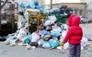 Депутат Госдумы назвал бредом нормативы накопления мусора