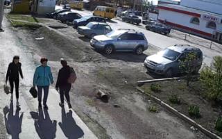 """Садчиков не контролирует ситуацию, а полиция """"охотится"""" на бабушек?"""