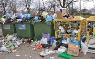 Ответственность за мусор у контейнеров возложили на муниципалитеты