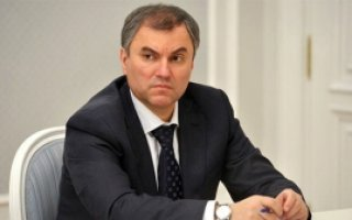 В. Володин направил официальный запрос в адрес губернатора