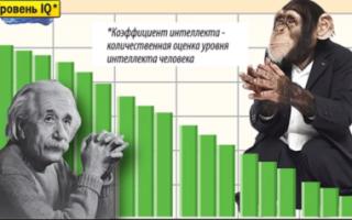 Города Саратовской области проверили на уровень IQ