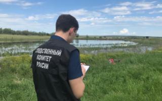 В Ивантеевском районе пастух утонул вместе с лошадью