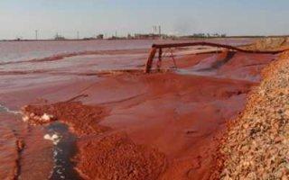Саратовской области грозит масштабная экологическая катастрофа