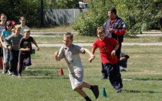 Письмо правительству России против «дистанционки» и закрытия спортшкол
