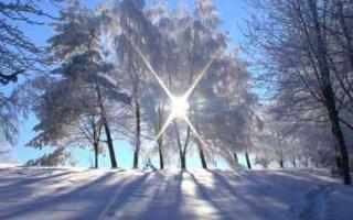 Морозная и солнечная пятница