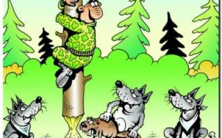 """ТК """"Новая искренность"""": Как бы саратовцы не устроили охоту на своих охамевших чиновников…"""