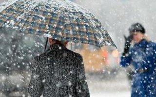 Южный циклон принесет в область снег с дождем и метель