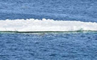 Труп на льдине