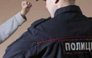 Житель Пугачева признал вину в избиении полицейского