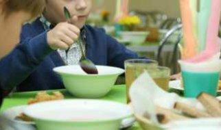 Каждый третий родитель недоволен качеством еды в школьных столовых