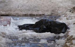 В Пугачеве 18-летний парень насмерть забил приятеля глыбой льда