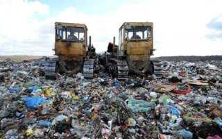 Депутаты Госдумы потолкли мусор в ступе