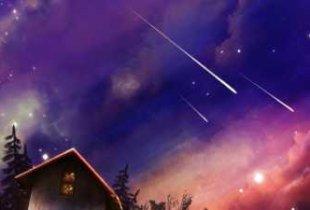 Жители области смогут увидеть звездопад