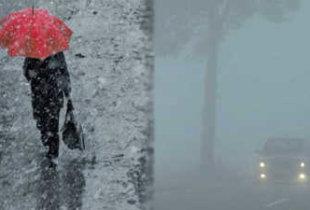 В области прогнозируются дожди и туманы