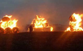 В Пугачевском районе неизвестный спалил пять тонн соломы