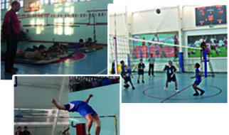 Волейбол, бег, прыжки в высоту