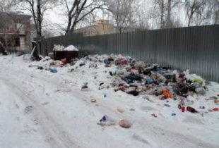 Эксперт рассказал о дырах в «мусорном» законе