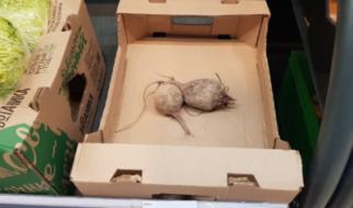 Радаевские чиновники поставили себе в заслугу снижение цен на овощи и фрукты