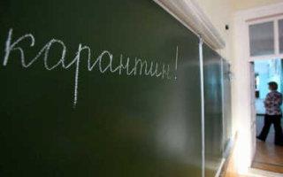 В Саратовской области в 30 школах введен карантин по коронавирусу