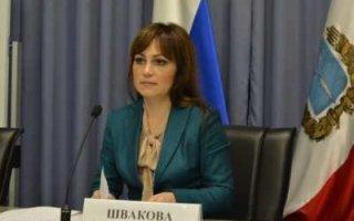 Министр Швакова перевела стрелки