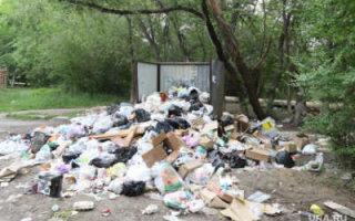 """""""Народный контроль"""" придумал как решить проблему с вывозом мусора"""