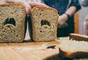 Жителей области будут кормить хлебом из фуражного зерна