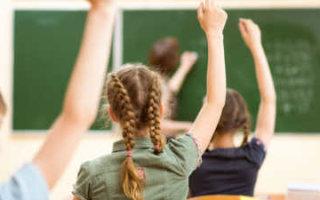 В Госдуме предложили отменить проверочные работы для школьников