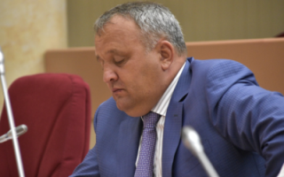 П. Артемов о реакции сенаторов на западную инициативу
