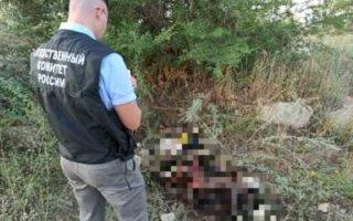 В Пугачеве обнаружено тело пропавшей две недели назад пенсионерки