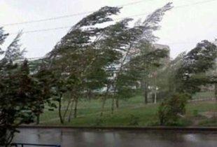 В Пугачевском районе ожидается шквалистый ветер, град и ливень