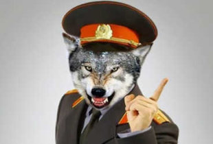 Силовики задержали руководителей антинаркотического отдела полиции