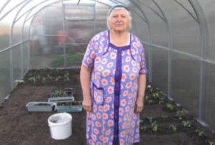 Из-за нового налога огородники сносят свои теплицы