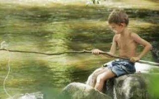 Именное разрешение на лов рыбы. Новая инициатива Правительства РФ