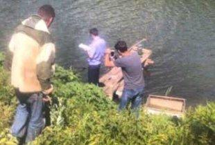 В Пугачевском районе утонул пенсионер